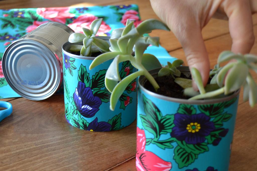 Cadeaux de Noël DIY : Les petites plantes